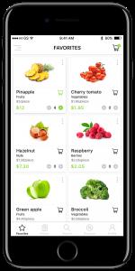 Organic-Grocery-Shop-01